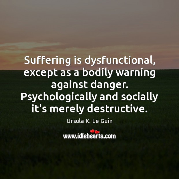Suffering is dysfunctional, except as a bodily warning against danger. Psychologically and Image