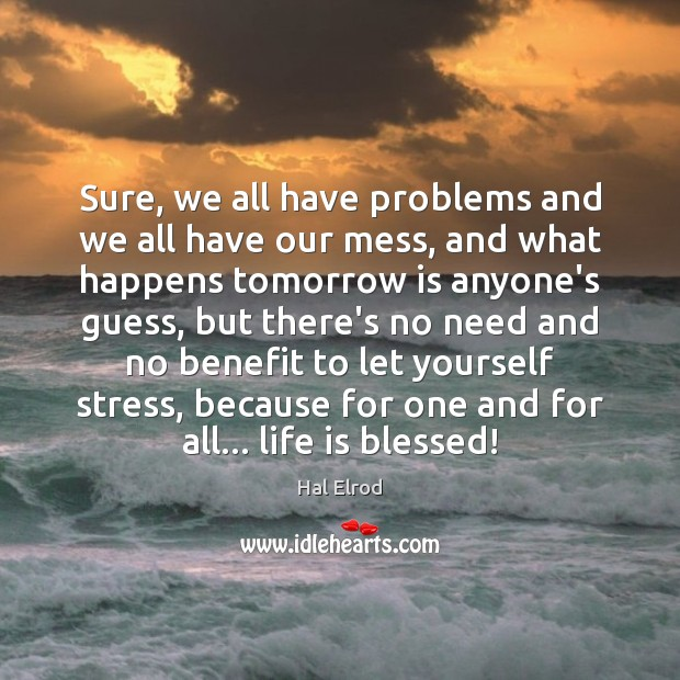 Sure, we all have problems and we all have our mess, and Hal Elrod Picture Quote