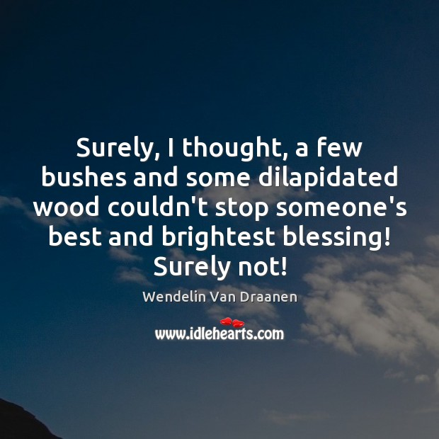 Surely, I thought, a few bushes and some dilapidated wood couldn't stop Wendelin Van Draanen Picture Quote