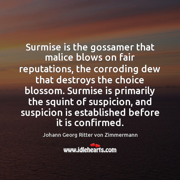 Surmise is the gossamer that malice blows on fair reputations, the corroding Johann Georg Ritter von Zimmermann Picture Quote