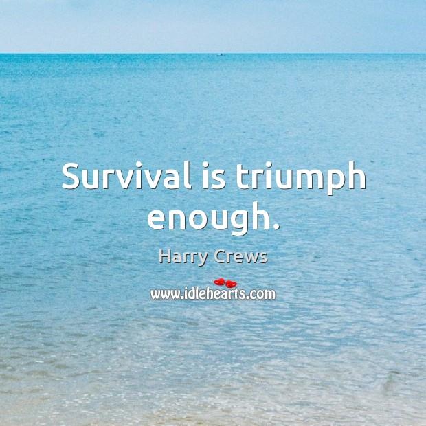 Survival is triumph enough. Image