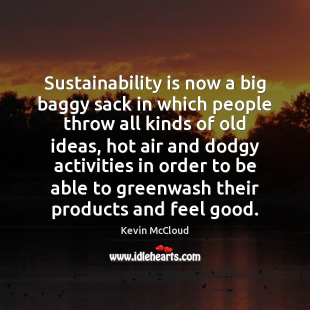 Image, Sustainability is now a big baggy sack in which people throw all