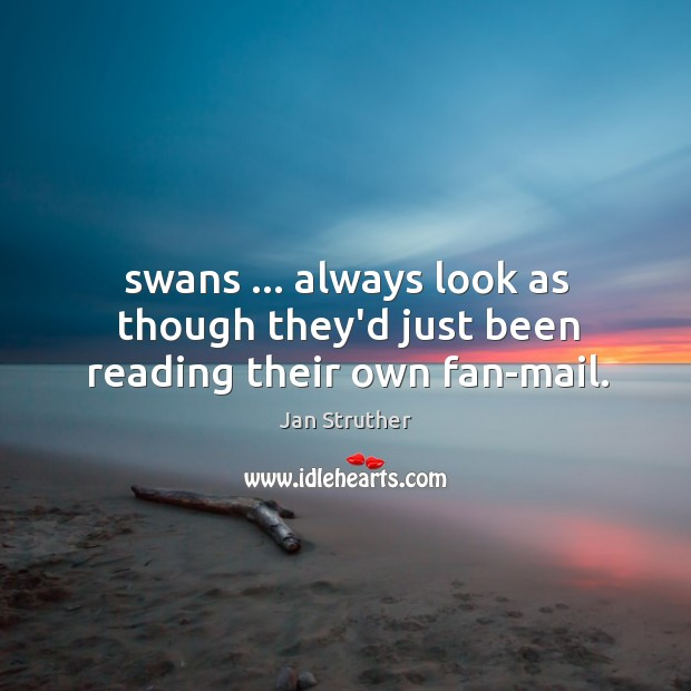 Swans … always look as though they'd just been reading their own fan-mail. Jan Struther Picture Quote