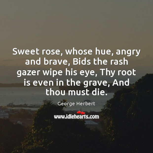 Sweet rose, whose hue, angry and brave, Bids the rash gazer wipe George Herbert Picture Quote