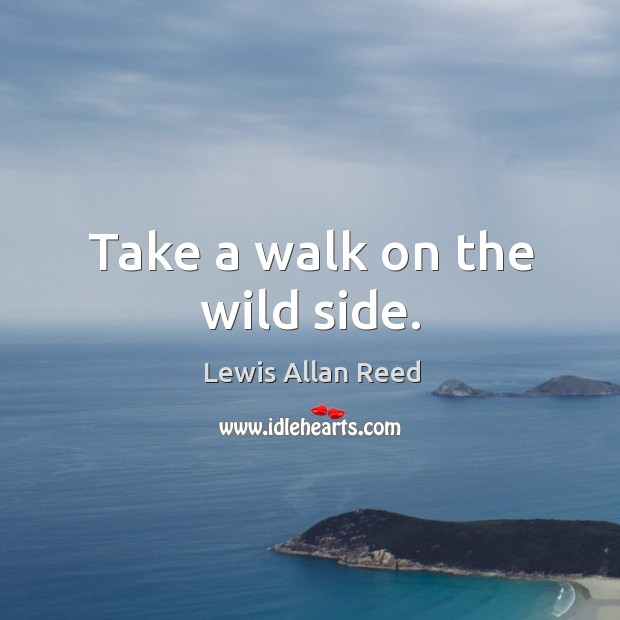 Take a walk on the wild side. Lewis Allan Reed Picture Quote