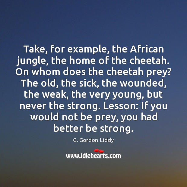 Take, for example, the African jungle, the home of the cheetah. On Image
