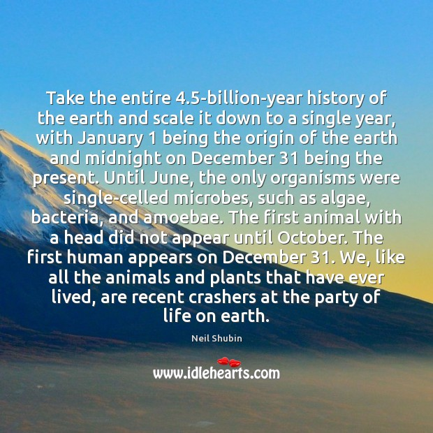 Image, Take the entire 4.5-billion-year history of the earth and scale it down