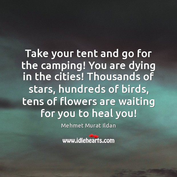 Image, Take your tent and go for the camping! You are dying in
