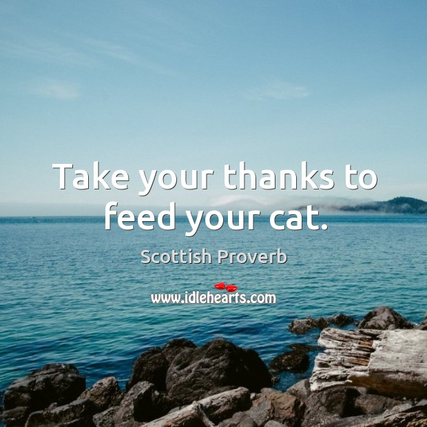 Image, Take your thanks to feed your cat.