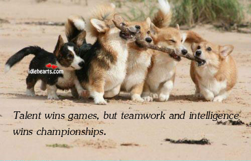 Talent Wins Games, But Teamwork And Intelligence Wins..