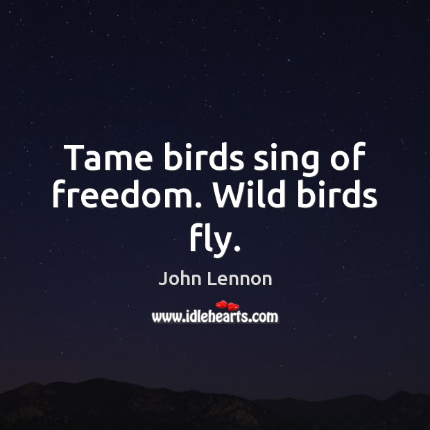 Tame birds sing of freedom. Wild birds fly. John Lennon Picture Quote
