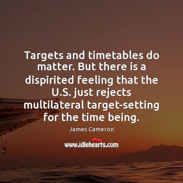 Targets and timetables do matter. But there is a dispirited feeling that James Cameron Picture Quote