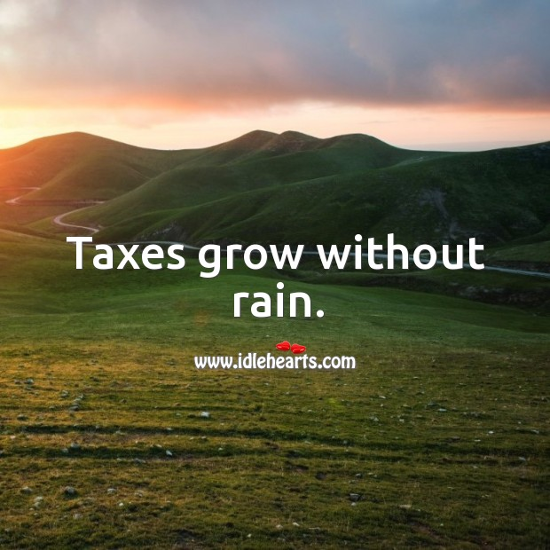 Taxes grow without rain. Image