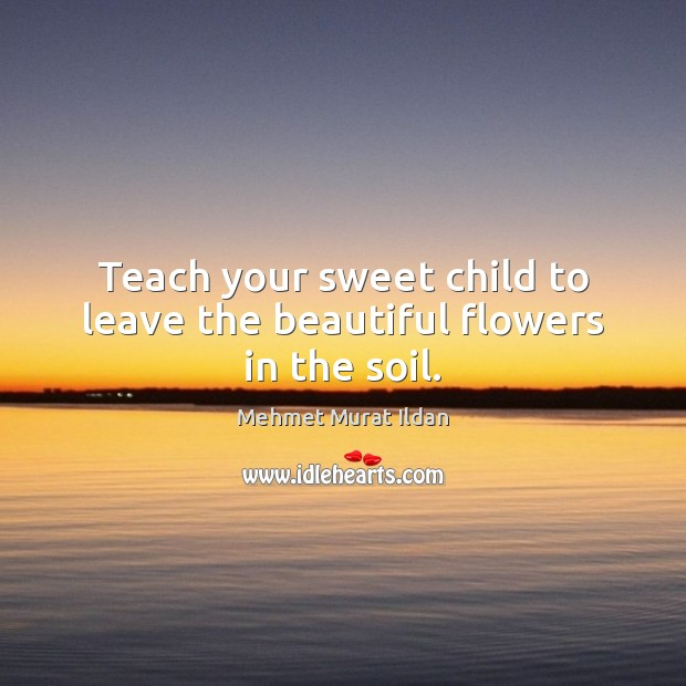 Image, Teach your sweet child to leave the beautiful flowers in the soil.