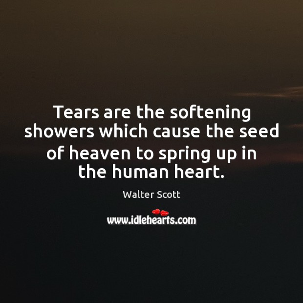 Tears are the softening showers which cause the seed of heaven to Walter Scott Picture Quote