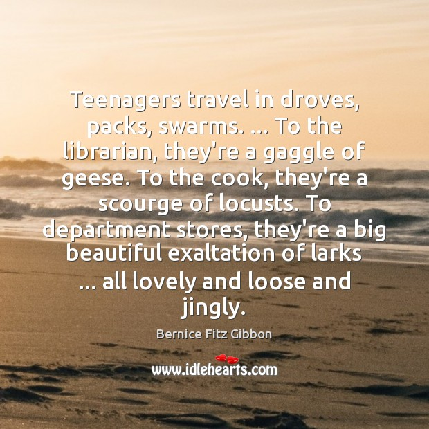 Teenagers travel in droves, packs, swarms. … To the librarian, they're a gaggle Image