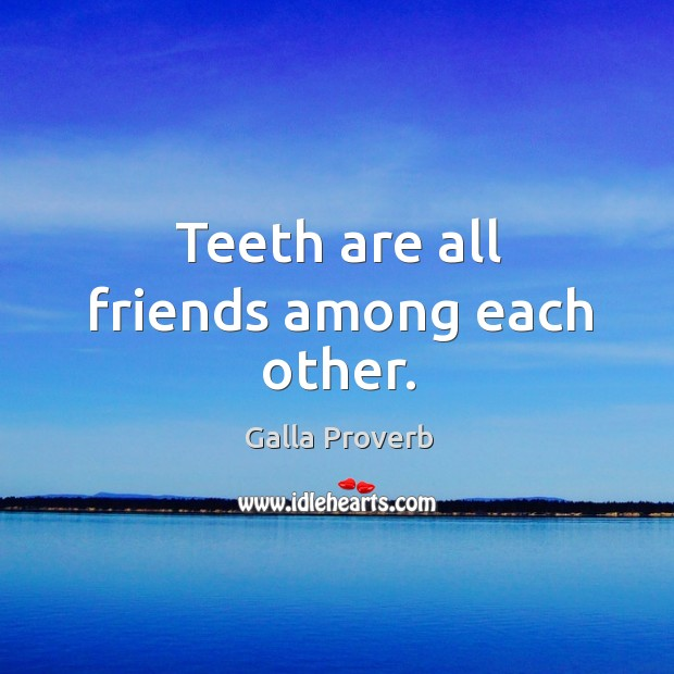 Galla Proverbs