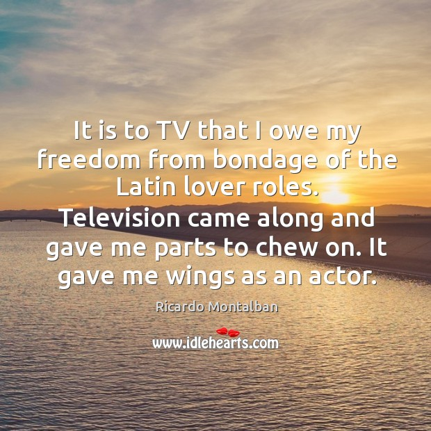 Television came along and gave me parts to chew on. It gave me wings as an actor. Ricardo Montalban Picture Quote