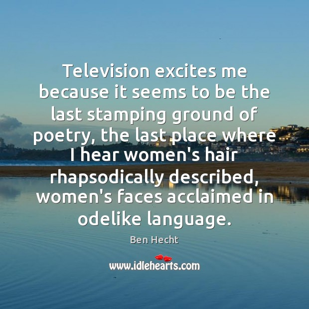 Image, Television excites me because it seems to be the last stamping ground