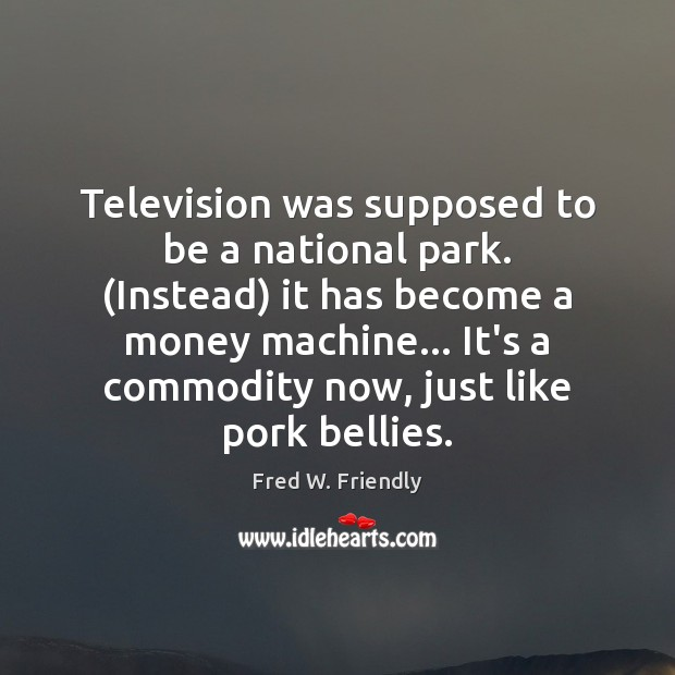 Television was supposed to be a national park. (Instead) it has become Image