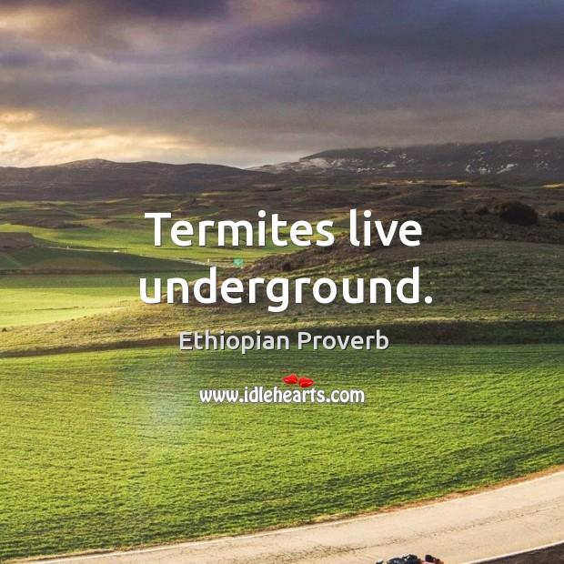 Termites live underground. Ethiopian Proverbs Image