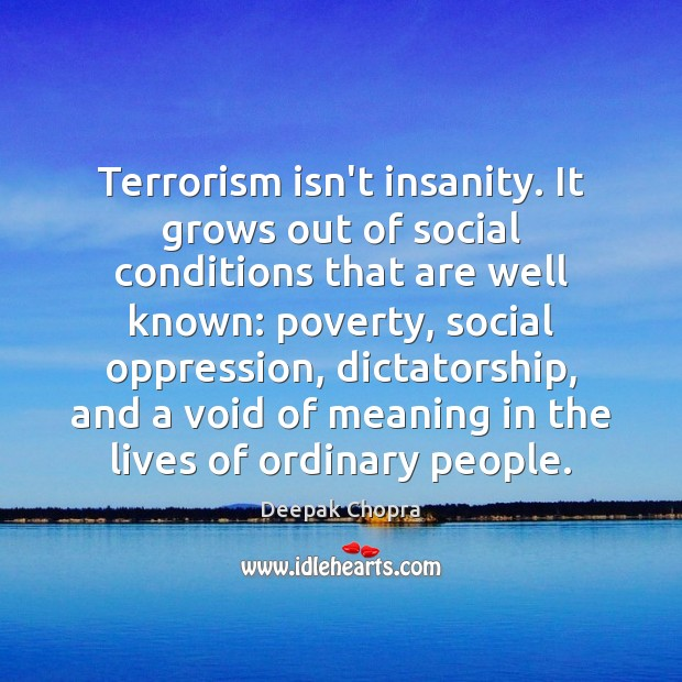 Terrorism isn't insanity. It grows out of social conditions that are well Image