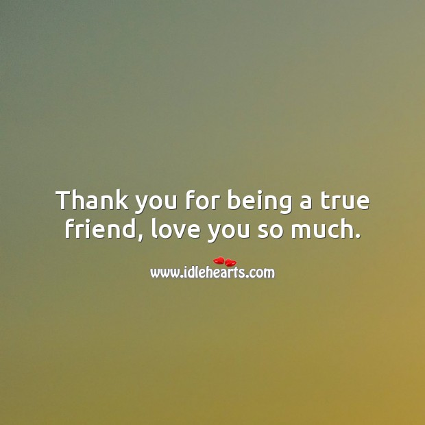 Thank you for being a true friend, love you so much. Love You So Much Quotes Image