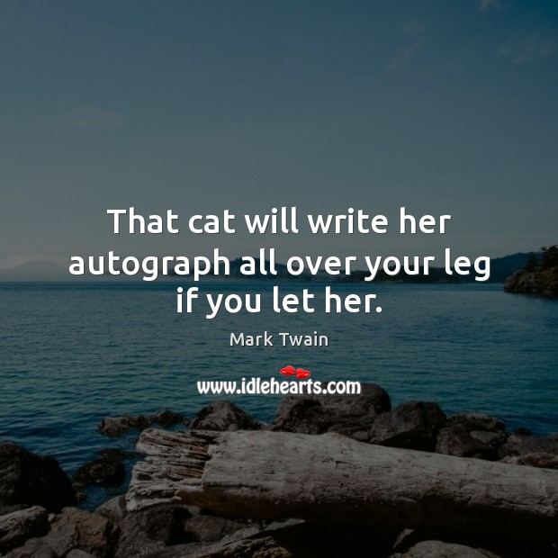 Image, That cat will write her autograph all over your leg if you let her.