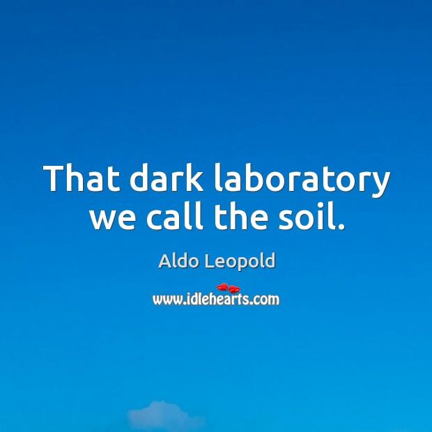 Image, That dark laboratory we call the soil.