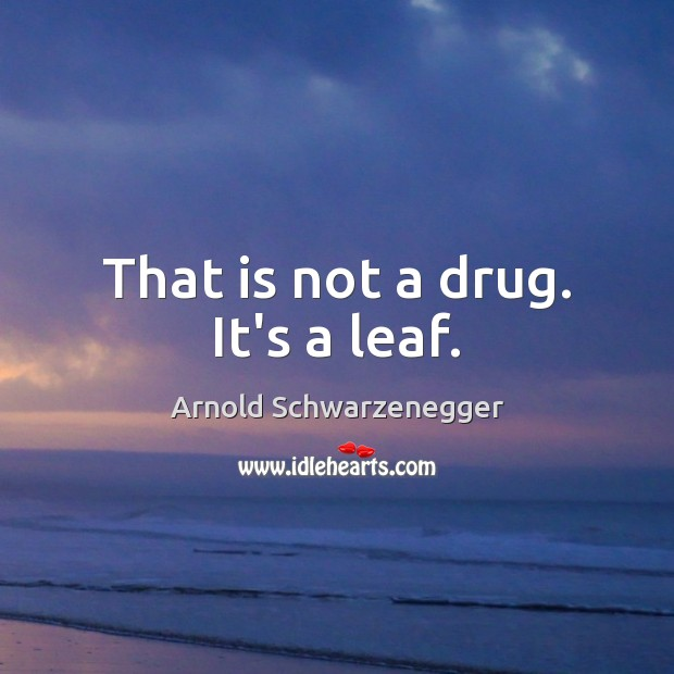 That is not a drug. It's a leaf. Arnold Schwarzenegger Picture Quote