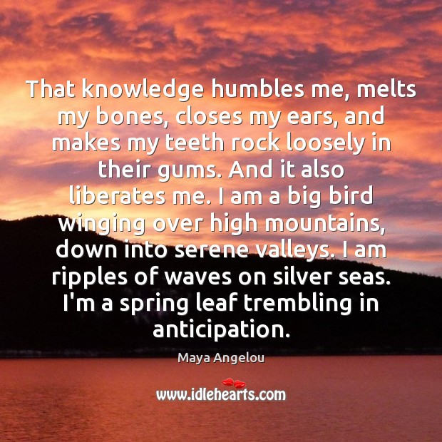 That knowledge humbles me, melts my bones, closes my ears, and makes Maya Angelou Picture Quote