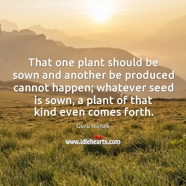 That one plant should be sown and another be produced cannot happen; Image