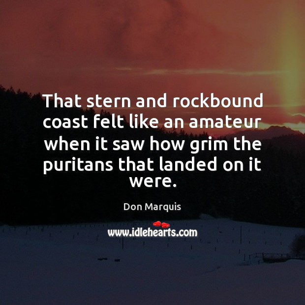 That stern and rockbound coast felt like an amateur when it saw Don Marquis Picture Quote