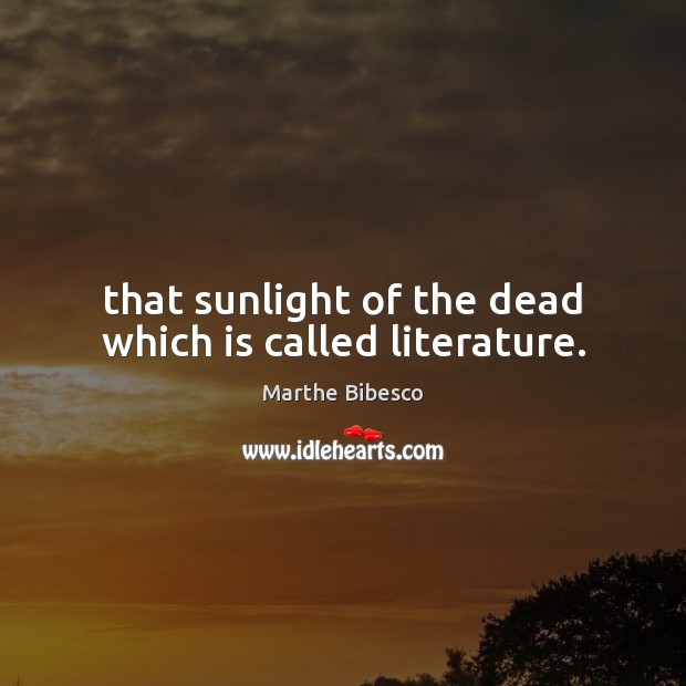 Image, That sunlight of the dead which is called literature.