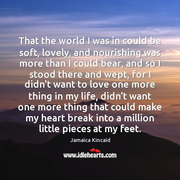 That the world I was in could be soft, lovely, and nourishing Image