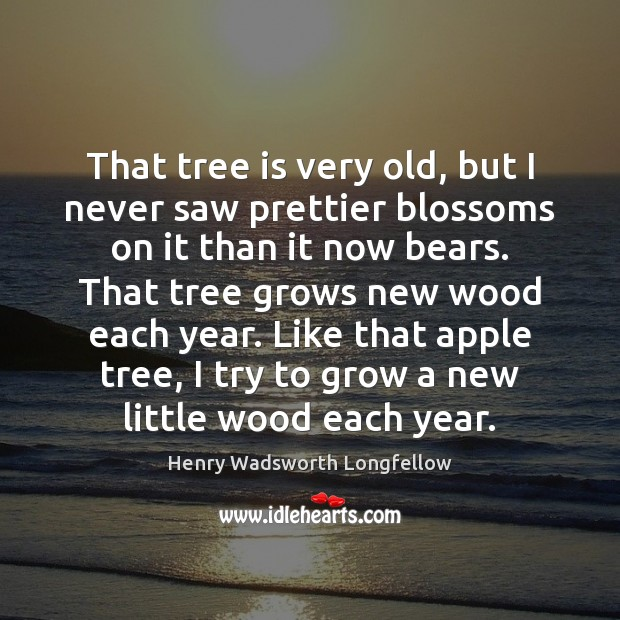 That tree is very old, but I never saw prettier blossoms on Henry Wadsworth Longfellow Picture Quote