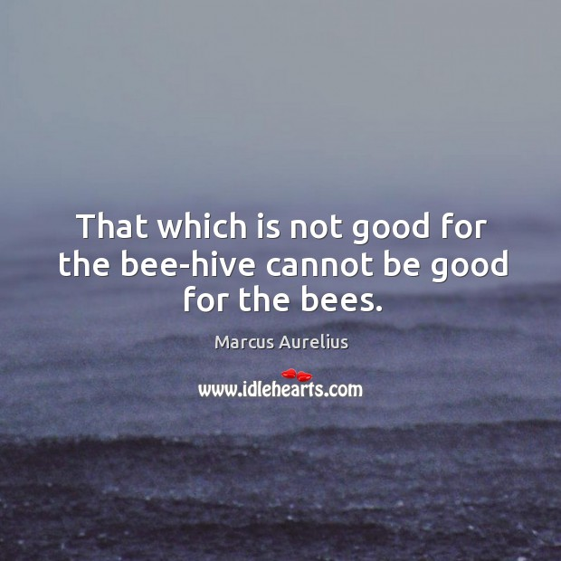 That which is not good for the bee-hive cannot be good for the bees. Image