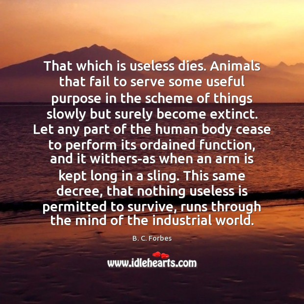 Image, That which is useless dies. Animals that fail to serve some useful