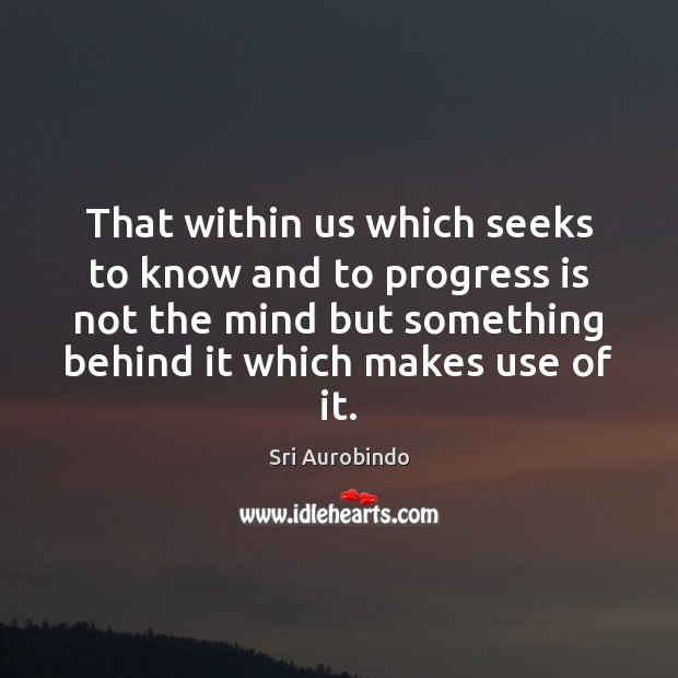 That within us which seeks to know and to progress is not Sri Aurobindo Picture Quote