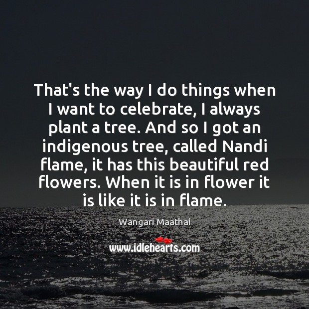 That's the way I do things when I want to celebrate, I Image