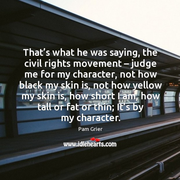 That's what he was saying, the civil rights movement – judge me for my character Pam Grier Picture Quote