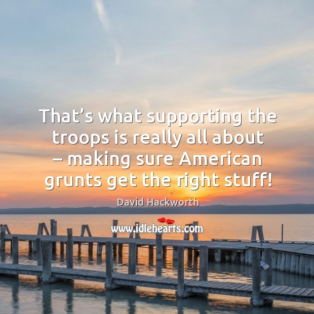 That's what supporting the troops is really all about – making sure american grunts get the right stuff! David Hackworth Picture Quote