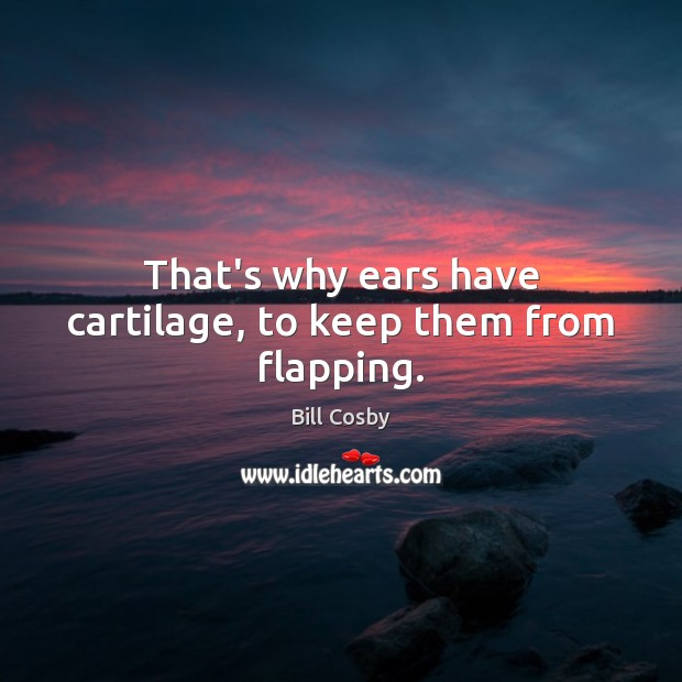 That's why ears have cartilage, to keep them from flapping. Image