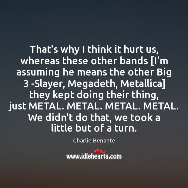 Image, That's why I think it hurt us, whereas these other bands [I'm