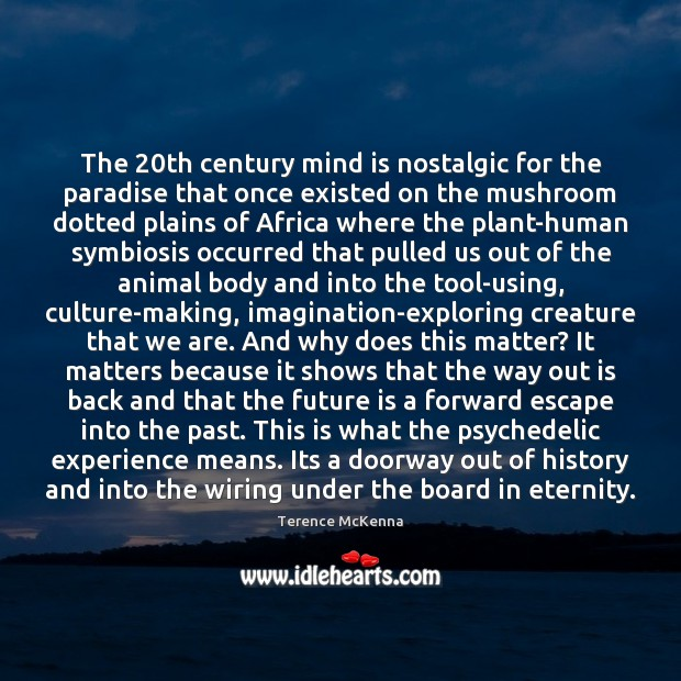 The 20th century mind is nostalgic for the paradise that once existed Image