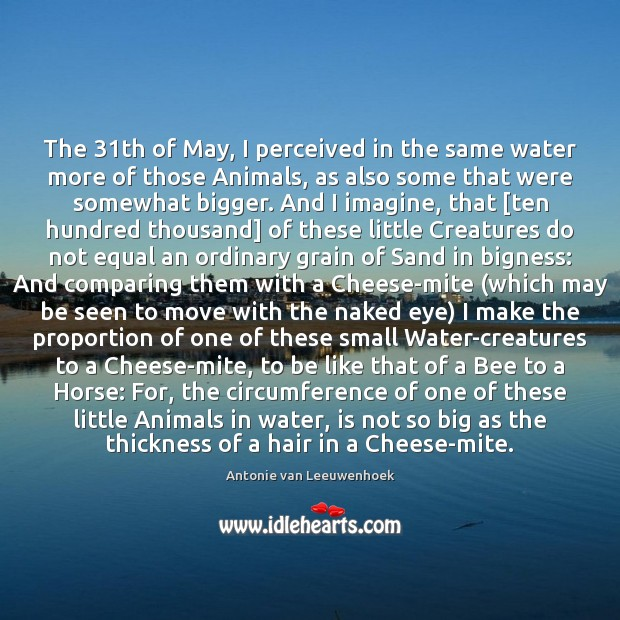 Image, The 31th of May, I perceived in the same water more of