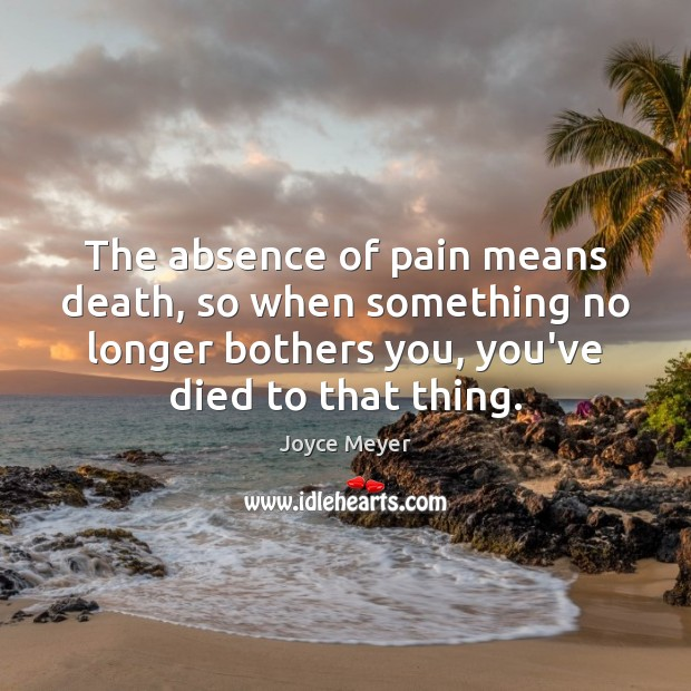 The absence of pain means death, so when something no longer bothers Joyce Meyer Picture Quote