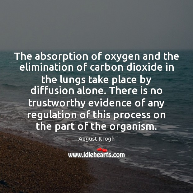 Image, The absorption of oxygen and the elimination of carbon dioxide in the