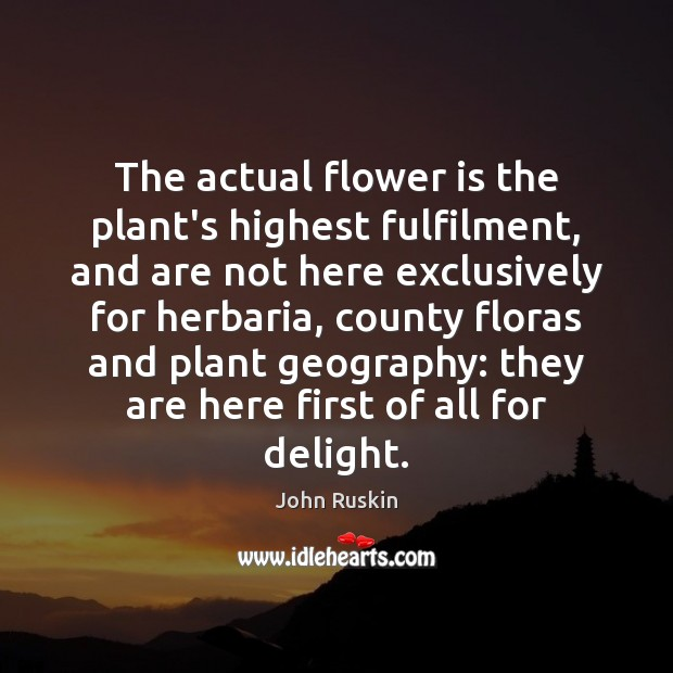 Image, The actual flower is the plant's highest fulfilment, and are not here