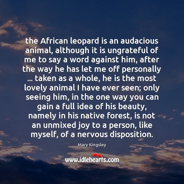 Image, The African leopard is an audacious animal, although it is ungrateful of